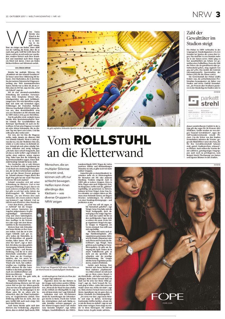thumbnail of Welt am Sonntag 11.17